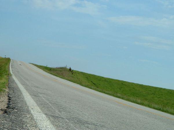 elk-chapel-road-irgendwo-in-iowa-92af57a2-d4d2-45ba-9ca4-4d5c503a0219