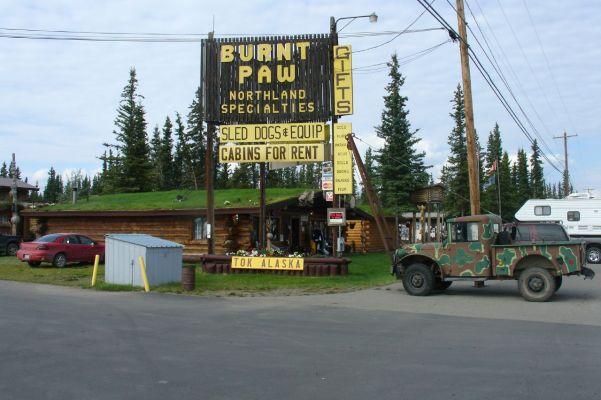 Tok_Alaska_Burnt_Paw