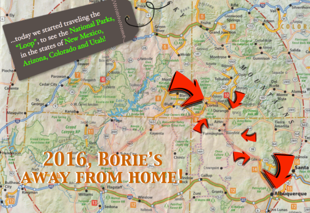 2016, Borie's away from home! (7)