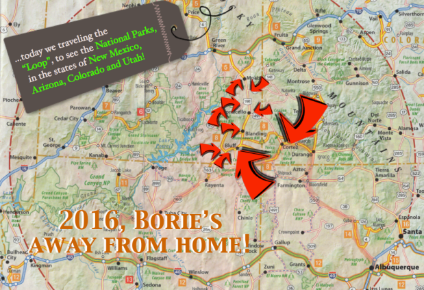 2016, Borie's away from home (8)