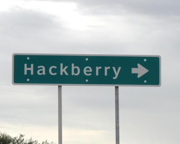 hackberry-13