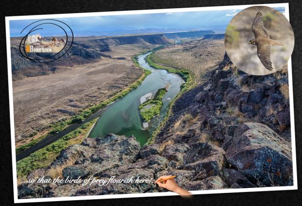 …Snake River!