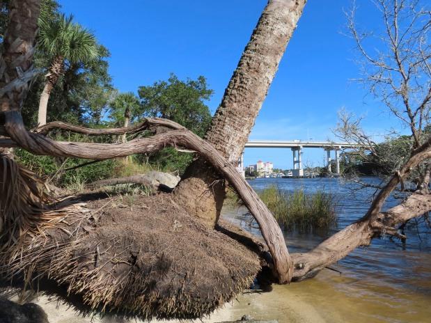 …parque da beira d'água!. (WaterfrontPark)!.